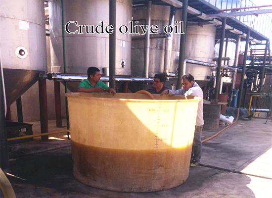 Peru 20tpd batch type olive oil refinery plant video