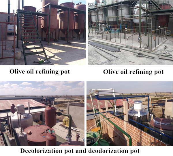 olive oil refinery plant