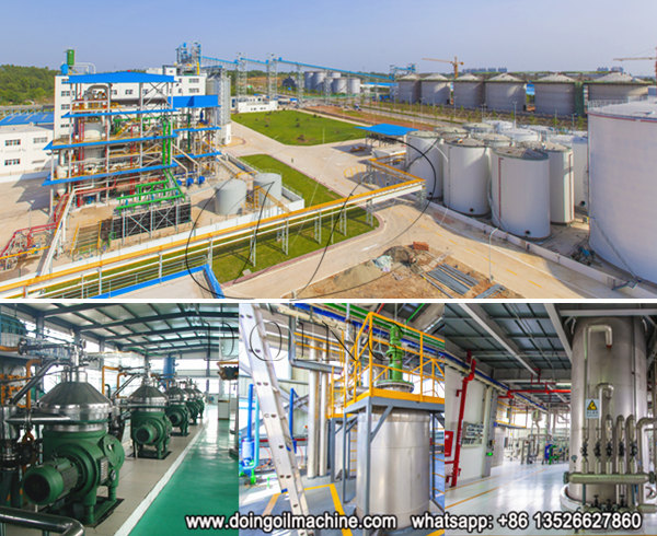 continuous palm oil refinery plant