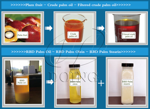 palm oil refinery products