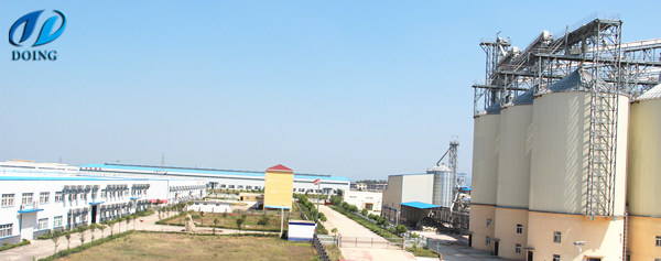 palm oil refinery plant